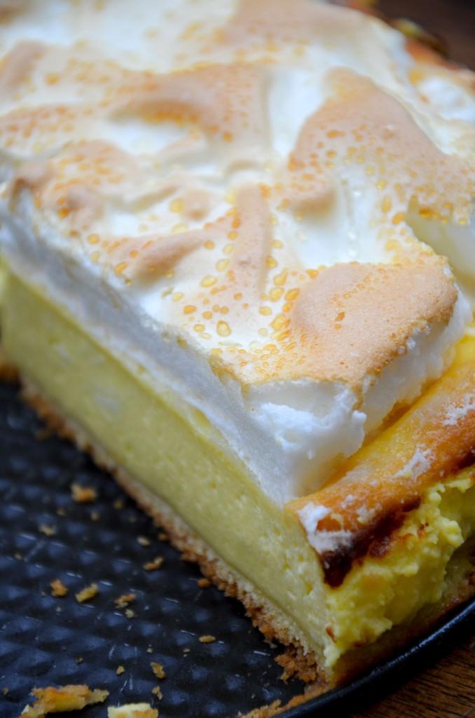 Topfen-Baiser-Torte (1)