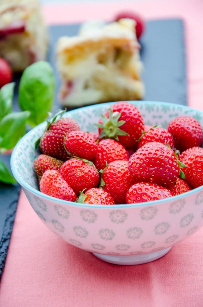 Topfen-Rhabarber-Erdbeer-Streuselkuchen-11
