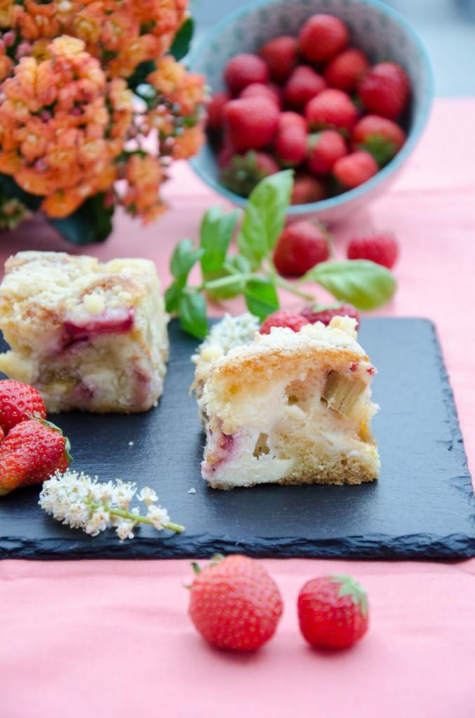 Topfen-Rhabarber-Erdbeer-Streuselkuchen-14