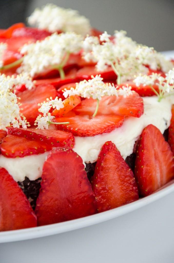 Erdbeer Holunder Schokoladen-Torte-15