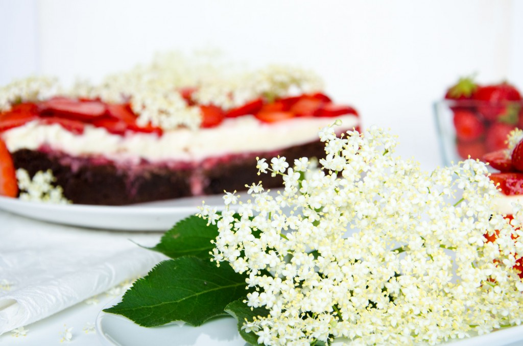 Erdbeer Holunder Schokoladen-Torte-6