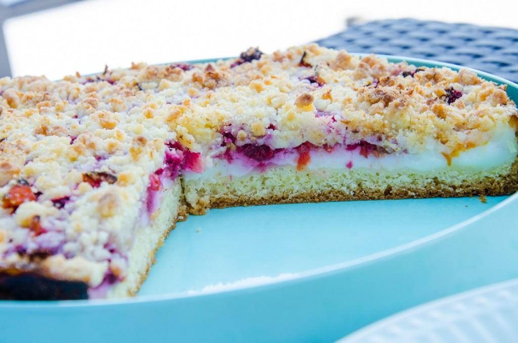 Himbeer Kokos Torte-4