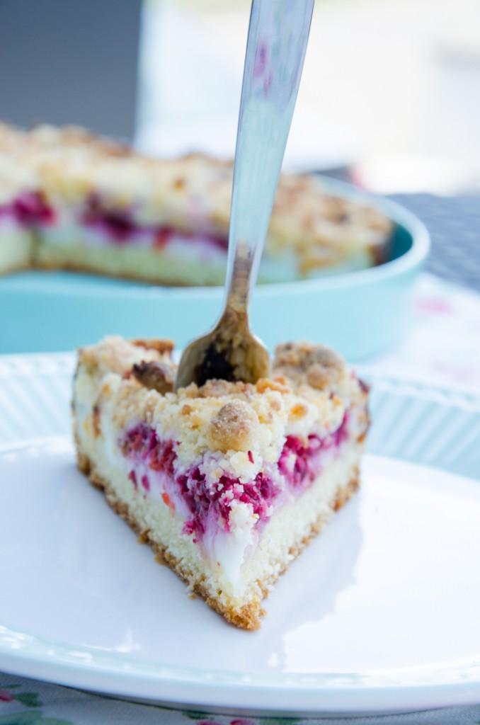 Himbeer Kokos Torte-5