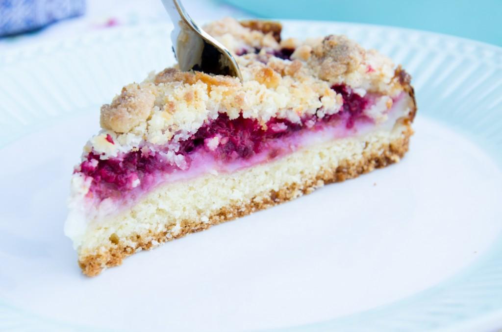 Himbeer Kokos Torte-7